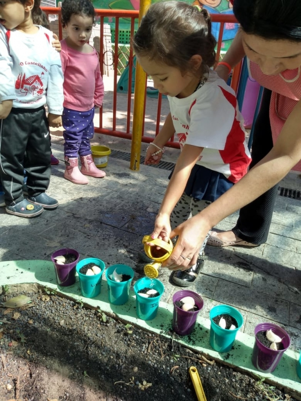 Berçário Integral Chácara Flora - Jardim Escola 3 Anos