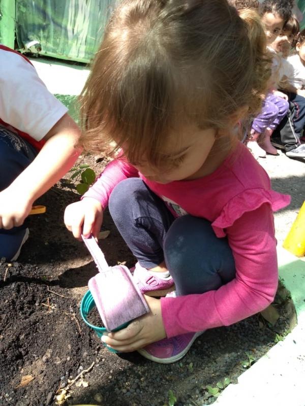 Escola de Educação Infantil Jardim Internacional - Escola Particular Infantil