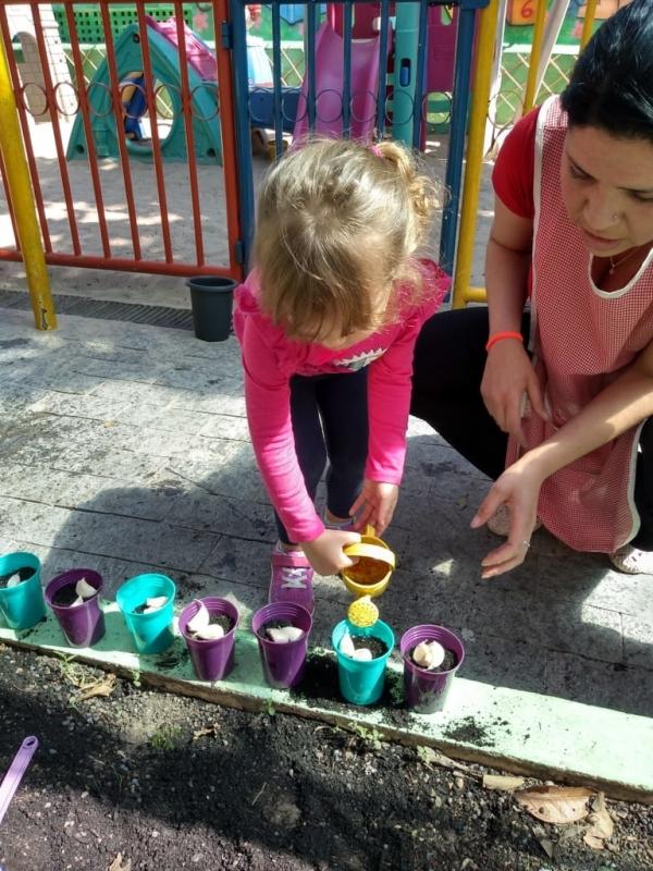 Onde Tem Berçário Integral Aeroporto - Jardim de Escola 2 Anos