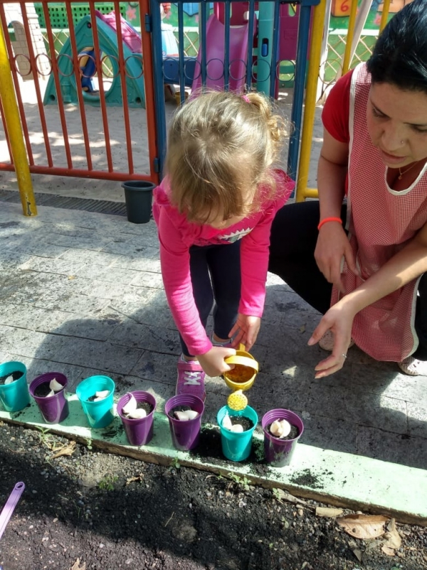 Onde Tem Berçário Integral Vila Progredior - Jardim Escola Integral