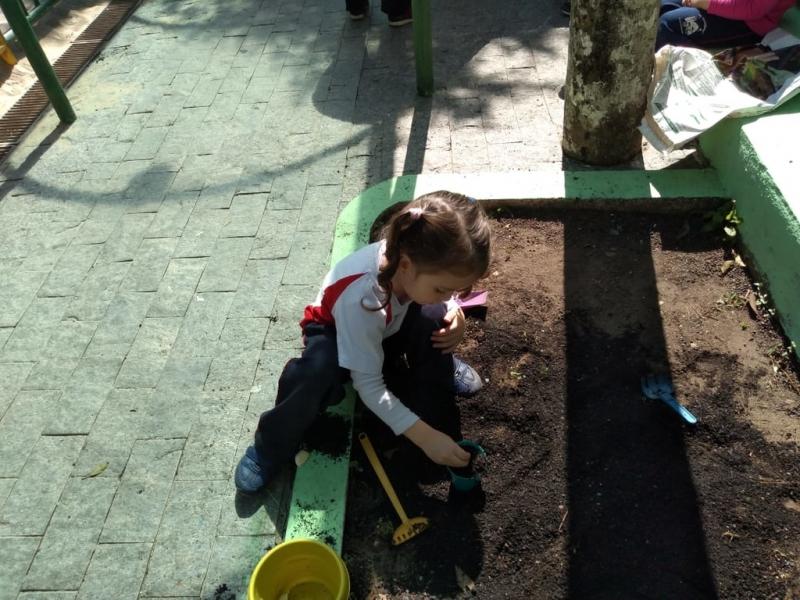 Onde Tem Creche Integral Jardim Internacional - Educandário Jardim de Infância